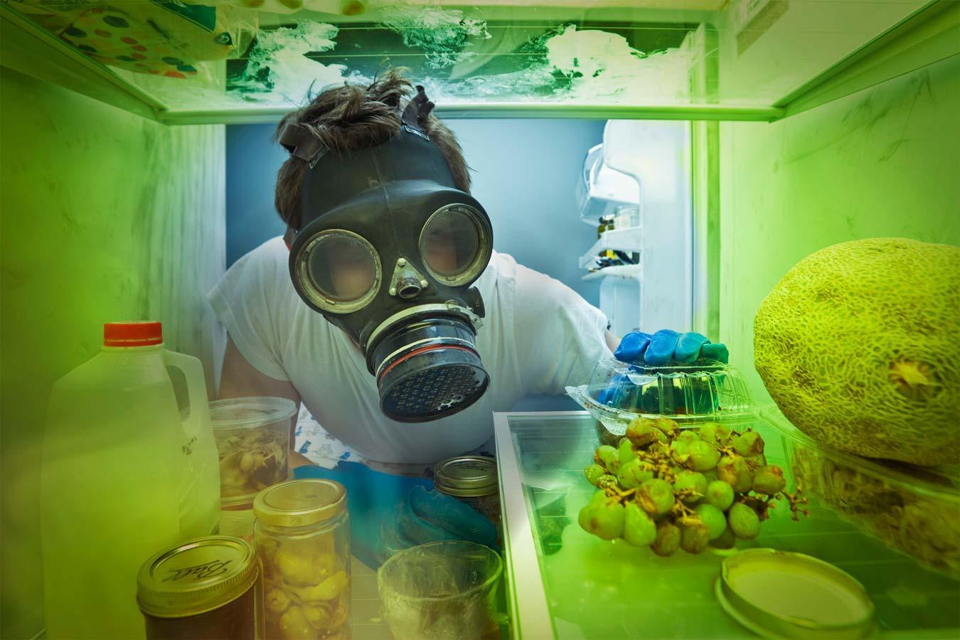 Hình ảnh vi khuẩn trong tủ lạnh